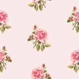 Безшовный цветочный узор с маленькими розами Стоковое фото RF