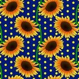 Безшовный цветочный узор с оранжевыми цветками солнцецвета Стоковые Фотографии RF