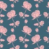 Безшовный цветочный узор с пионами Стоковое Изображение RF