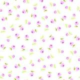 Безшовный цветочный узор с розовыми розами Стоковое Фото