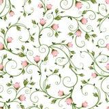 Безшовный цветочный узор с розовыми rosebuds также вектор иллюстрации притяжки corel иллюстрация вектора