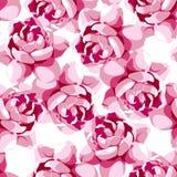 Безшовный цветочный узор с розовым цветком Стоковые Фотографии RF