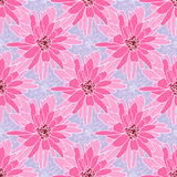 Безшовный цветочный узор с румяной хризантемой стоковые фотографии rf