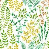 Безшовный цветочный узор с травами и листьями Стоковая Фотография RF