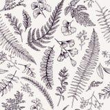 Безшовный цветочный узор с травами и листьями Стоковые Фотографии RF