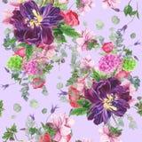 Безшовный цветочный узор с тюльпанами, ветреницами, гортензией, евкалиптом и листьями, картиной акварели Стоковая Фотография