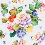 Безшовный цветочный узор с цветками гортензии и красивыми розами Иллюстрация штока