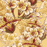 Безшовный цветочный узор с экзотическими цветками Стоковые Фото