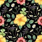 Безшовный цветочный узор с wildflowers на темной предпосылке Нарисованная рукой иллюстрация акварели Бесплатная Иллюстрация
