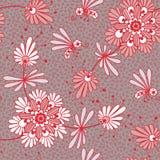Безшовный цветочный узор. Стоковые Изображения