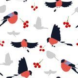 Безшовный bullfinches и ягод Стоковые Изображения RF