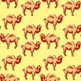 Безшовный redhead верблюда картины усмехаясь шарж Illustr вектора Стоковые Фото