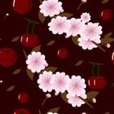 Безшовн-предпосылк-с-сочн-вишн-и-вишн-цветк-на-Бургундский-предпосылка иллюстрация штока