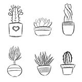 Set of cute succulents plants in pots royalty free illustration