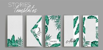 Set of tropical instagram Templates.Vector Layout. Design backgrounds for social media banner. royalty free illustration