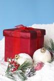 Безделушки и подарочная коробка сосен рождества Snowy стоковая фотография rf