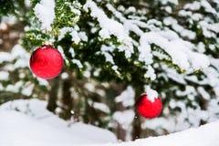 2 безделушки рождества на дереве Snowy Стоковые Фотографии RF