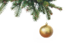 Безделушки рождества яркого блеска золота вися от ветви ели Стоковое фото RF