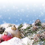 Безделушки сосен рождества Snowy стоковое фото rf
