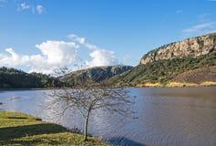 Безлистные дерево и озеро против ландшафта горы и долины Стоковое Изображение