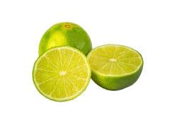 Без породы лимона семян Стоковое Изображение RF