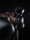 Без рубашки бокс боксера Стоковое Изображение RF