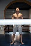Без сокращений съемка боксера на кольце Стоковые Изображения RF