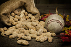 Бейсбол осени Стоковое фото RF