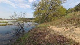 Беларусь Весна Лес на холме в периоде прилива акции видеоматериалы