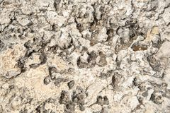 Белая абстрактная grungy предпосылка от скалистой поверхности Стоковые Фотографии RF
