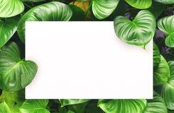 Белая бумага на зеленой предпосылке лист с разбивочным открытым космосом для текста или продукта монтажа Стоковые Фото