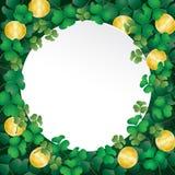 Белая бумага на листьях и монетке shamrock Стоковые Фотографии RF