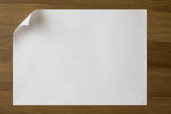 Белая бумага Стоковые Изображения RF