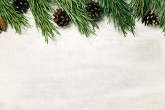 Белая деревянная предпосылка рождества украсила ветви сосны rr Стоковое Изображение