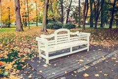 Белая деревянная скамья в парке в осени Стоковое фото RF