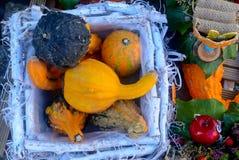 Белая корзина с овощами Стоковая Фотография RF