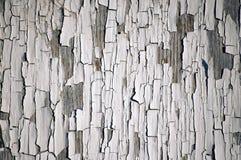 Белая краска шелушения Стоковое Фото
