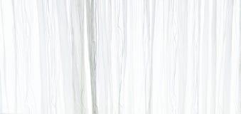 Белая отвесная предпосылка текстуры занавеса в атмосфере дневного света интерьера ` s квартиры Белый прозрачный занавес Стоковые Фото