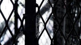 Белая паутина на загородке старых и загрязненной стали металла Стоковое Фото