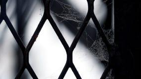 Белая паутина на загородке старых и загрязненной стали металла Стоковые Изображения