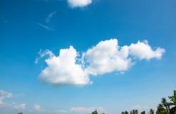 Белая предпосылка пасмурного и голубого неба как маленькая заявка черепахи на небе, чувствуя свежий и яркий стоковая фотография