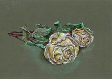 Белая роза карандаша цвета Цветки на зеленой предпосылке, Стоковые Изображения