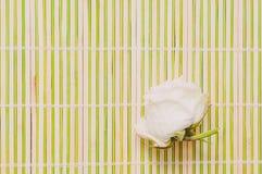 Белая роза на предпосылке бамбуковой стойки для кухни стоковые изображения