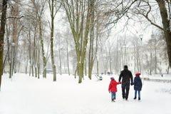 Белая снежная сцена парка города в зиме Красивый пейзаж зимы в Вильнюсе стоковое изображение rf