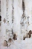 Белая старая стена Стоковая Фотография