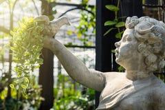 Белая статуя купидона держа птицу на руке в зеленом garde Стоковые Изображения RF