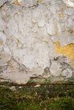 Белая стена гипсолита Стоковое фото RF