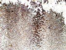 Белая текстура бетонной стены Текстура абстрактного искусства цветасто Стоковое фото RF