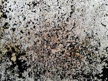 Белая текстура бетонной стены Текстура абстрактного искусства цветасто Стоковое Изображение