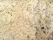 Белая текстура бетонной стены Текстура абстрактного искусства цветасто Стоковое Изображение RF